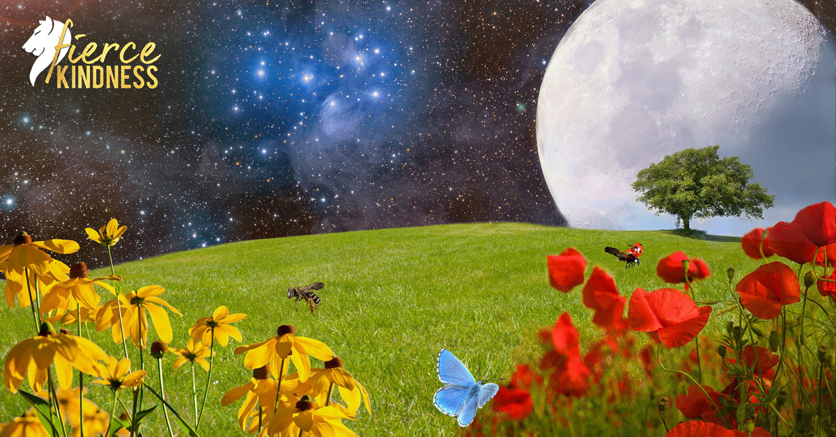 Beautiful Meadow Moon & Sky