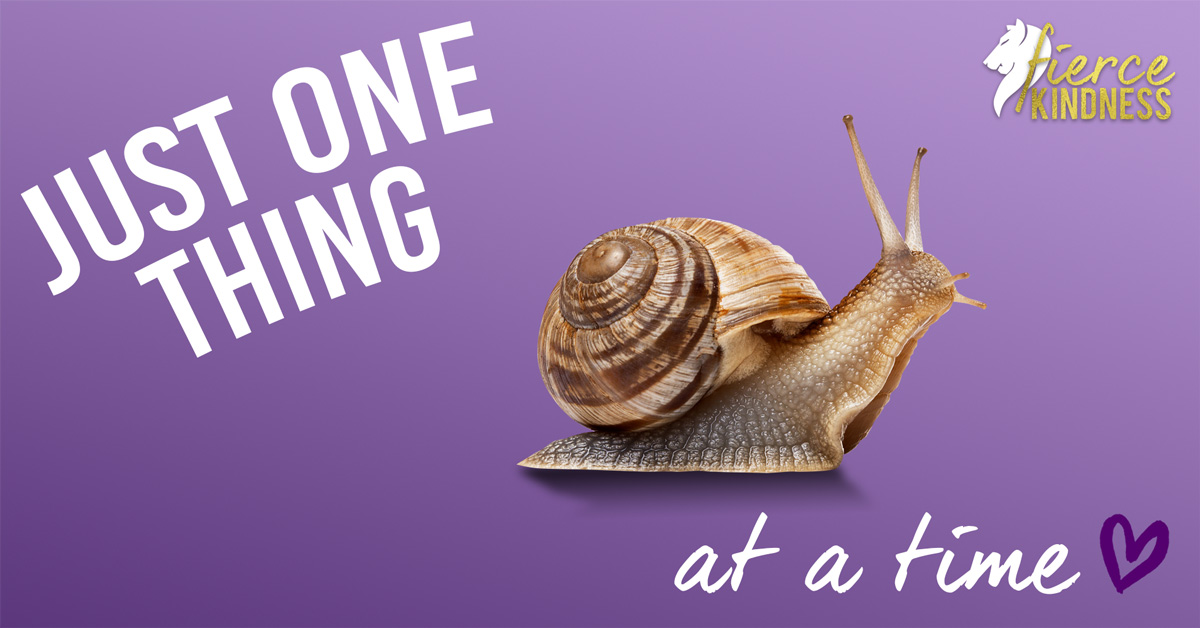 Just One Thing SNAIL