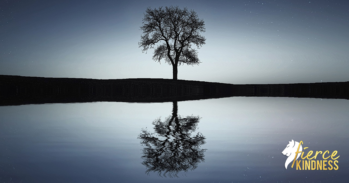 guided future self meditation of Tree reflected in lake