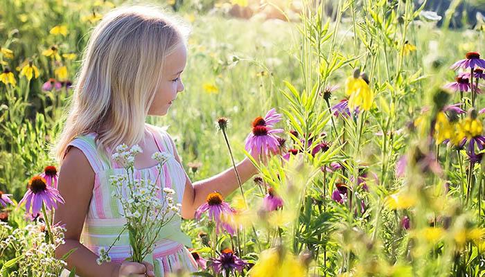 Little girl studying flowers